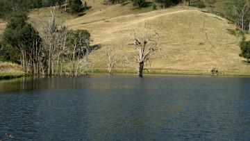 Fishing dam